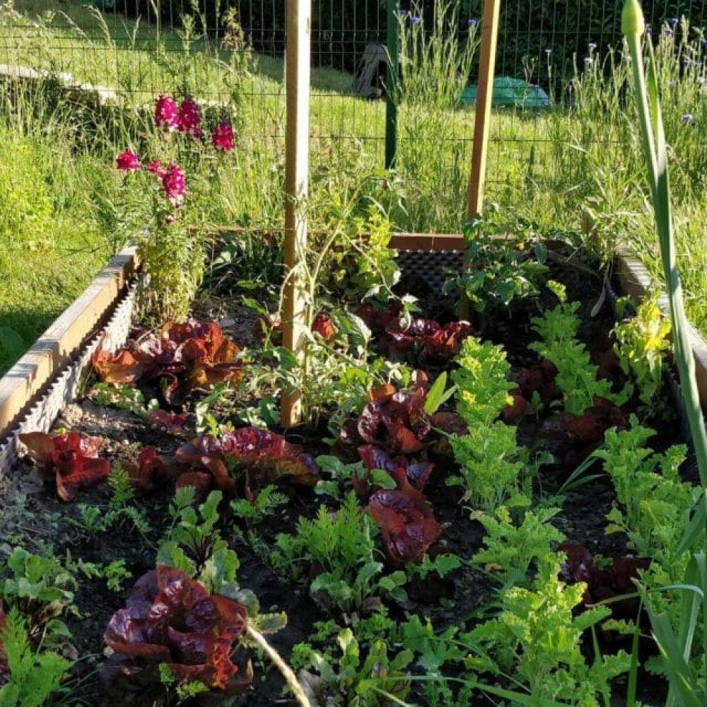 bac jardin